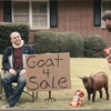 2013 Super Bowl Ads: Everything Else! - M&M's, GoDaddy, Doritos, Best Buy And More!