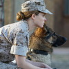 'Megan Leavey' Trailer Tells True Story Of A Soldier And Her Dog
