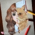 I-Combine-Two-Characters-Into-One-In-My-Color-Pencil-Illustrations-5c3c3c93349c0__700.jpg