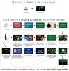 pirated-dvd-real-dvd.jpg