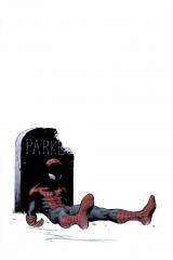 Death of Spider-Man cover.jpg