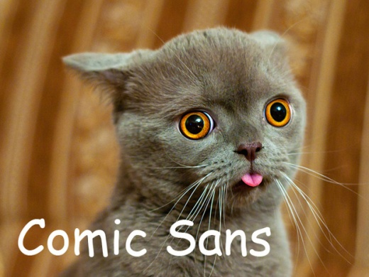 cats_as_fonts_02.jpg