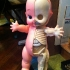 jason_freeny_anatomica_kewpie_11.jpg