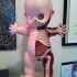 jason_freeny_anatomica_kewpie_20.jpg