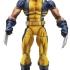 A4772_Wolverine_2_1360458342.jpg
