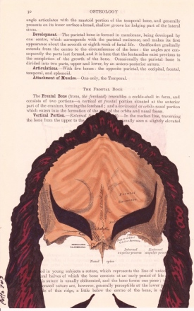 Julio-Cotto-Behind-the-Mask-and-Cape2-686x1099.jpg