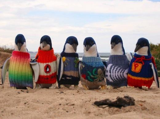 penguin-foundation.jpg
