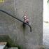 street_art_oakoak-007.jpg