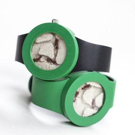 ant-watch-2.jpg