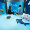 French Aquarium has Most Sharktastic Airbnb Room in The World