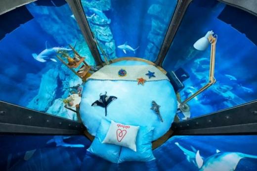 Airbnb-shark-tank-contest-889x591.jpg