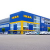 IKEA Considering Mushrooms Instead of Styrofoam as New Packing Material