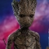 Hot Toys - AIW - Groot & Rocket collectible set_PR13.jpg