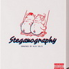 Steganography Art Book & Figure by Alex Solis