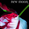 More British Blood For Twilight's New Moon