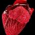 Reindeer-Heart-008.jpg