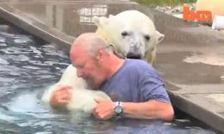 man_swims_with_polar_bear_feat.jpg