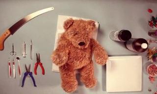 ze frank teddy has an operation_feat.jpg