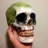 Jack-of-the-Dust-Skull-Art6.jpg