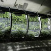 NASA's inflatable greenhouse - So Farmers Can Science The S#!% Out of Mars
