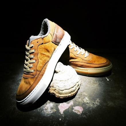 mushroom-sneakers-2.jpg