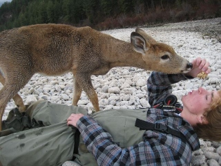 fisherman_meets_deer_5.jpg