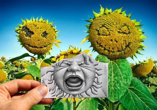 pencil-sunflower.jpg