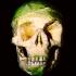 dimitri_tsykalov_fruit_skulls_5_20110906_1663436492.jpeg