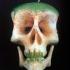 dimitri_tsykalov_fruit_skulls_8_20110906_1061755533.jpeg