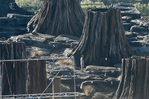 34675BED00000578-3600337-Huge_scale_Elsewhere_a_series_of_huge_tree_like_stumps_were_show-a-37_1463727143887.jpg