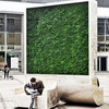 New Green Walls Have Air Cleaning Power of 275 Trees