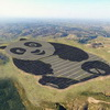 China's Adorable Panda Solar Farm