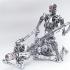terminator_endoskeleton_sex_3.jpg