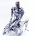 terminator_endoskeleton_sex_7.jpg