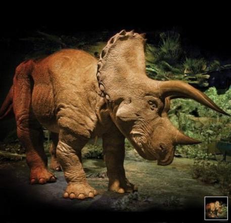 triceratopsrobo.jpg