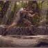 Rich-Kelly-Jurassic-Park-686x457.jpg