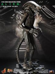 1-alien_big-chap-alien_resize.jpg
