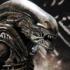 1-alien_big-chap-alien_resize_t.jpg