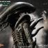 3-alien_big-chap-alien_resize.jpg
