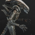 5-alien_big-chap-alien_resize.jpg