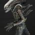 7-alien_big-chap-alien_resize.jpg