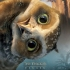 legend_guardians_owls_gahoole_digger_poster.jpg