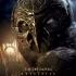 legend_guardians_owls_gahoole_metalbeak_poster.jpg