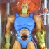 Thundercats-Classics-Lion-O-In-Package-3.jpg