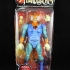 Thundercats-Classics-Tygra-In-Package-1.jpg