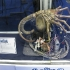 sdcc2011_prop-replica-005.jpg