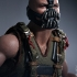 Hot Toys - The Dark Knight Rises - Bane Collectible Figure_PR7.jpg