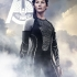 the-hunger-games-catching-fire-poster-katniss.jpg