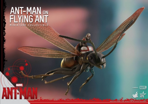 Hot-Toys-Antony-and-Ant-Man-Minature-Collectible-Set-003.jpg