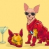 Josh-Lynch-Dog-Iron-Man-686x444.jpg